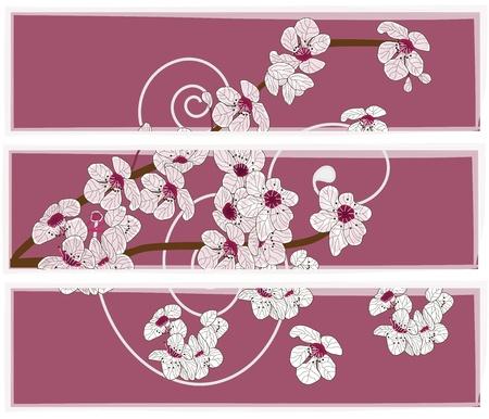 flor de durazno: conjunto artístico de banderas con la rama de los cerezos en flor Vectores