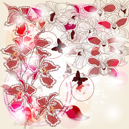 fuchsia: artistic composition with different kind of orchids and space for text