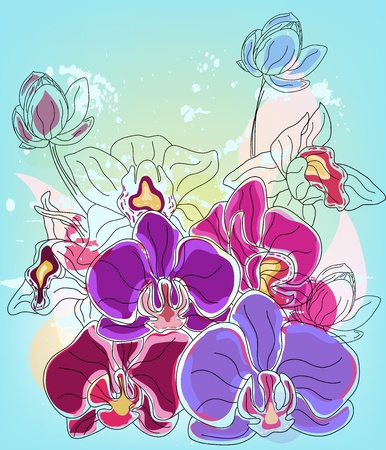 Orchid composition Vector