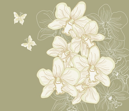 hand drawn orchid composition with butterflies Vector