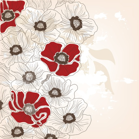 hand drawn poppies background Vector