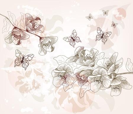 flor de durazno: Por rom�ntica elaborado postal primaveral Vectores