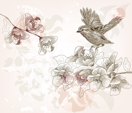birds scenery: hand drawn spring scene Illustration