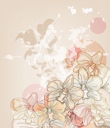 background or postcard with hand drawn orchids and space for text Vector