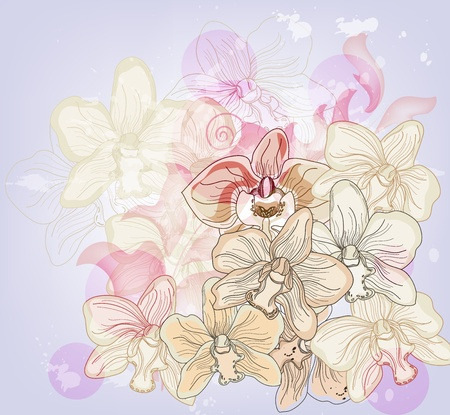 romantic composition with hand drawn orchids Illustration