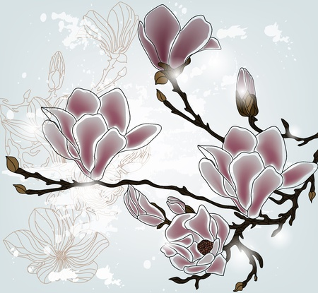 hand drawn flower: magnolia branch