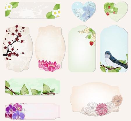 set di etichette di preziosi con decorazioni naturali