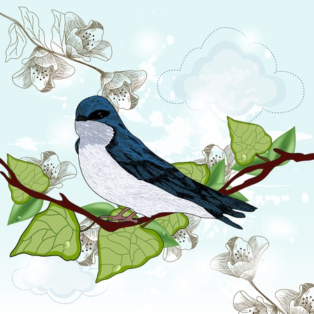 swallows: vintage swallow Illustration