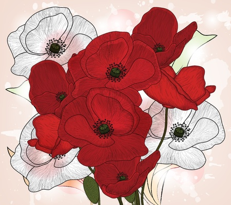 poppy leaf: vintage poppies composition Illustration
