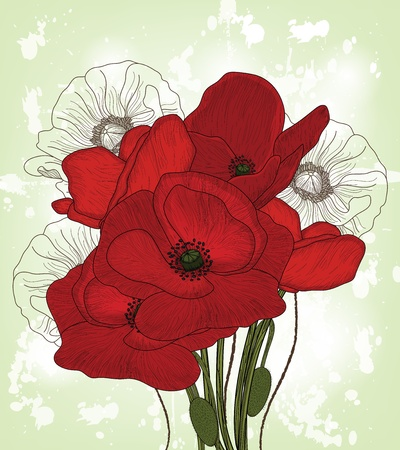 poppies: hand drawn vintage poppies composition