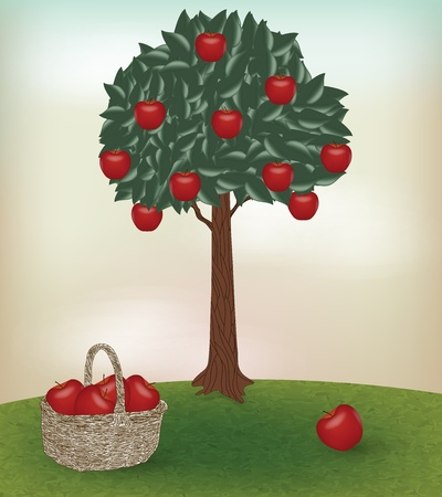 apples basket: apple time Illustration