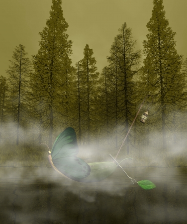 Fantasy boat in the mistyc forest photo