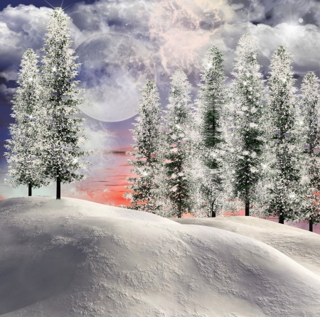 enchanted forest: Winter scene Stock Photo
