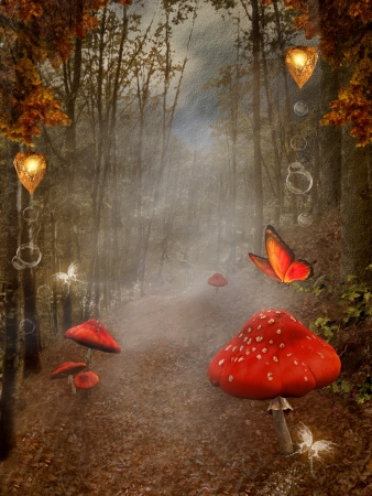 little red riding hood: Enchanted nature series - autumnal pathway with fog and red mushrooms