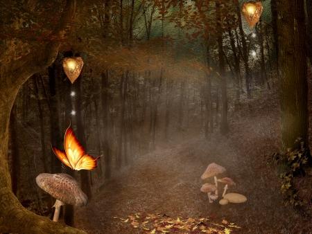 Enchanted nature series - autumnal enchanted pathway Stock Photo - 16022928