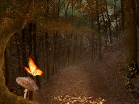 Enchanted nature series - autumnal pathway photo