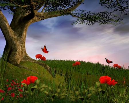 Enchanted nature series - Poppies hill photo