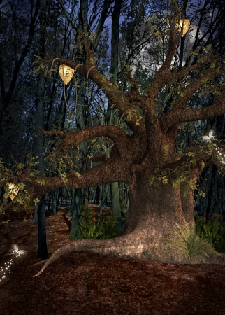 Enchanted nature series - Night in the forest Stock Photo