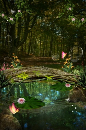 enchanted forest: Enchanted nature series - Enchanted pond Stock Photo
