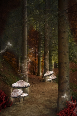 Enchanted nature series - enchanted pathway in the fairies forest Stock Photo