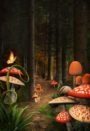 Enchanted nature series - mushrooms place