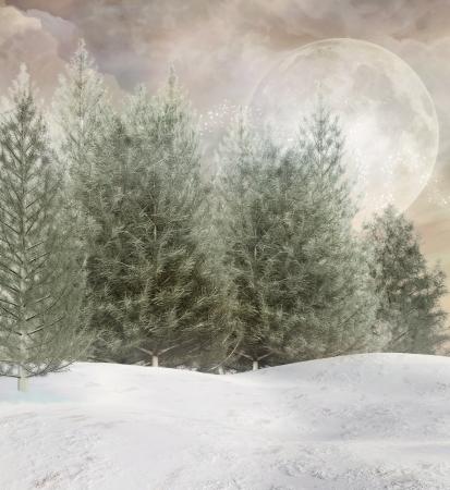 Enchanted winter 版權商用圖片