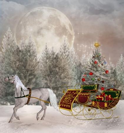 Reizen Kerst
