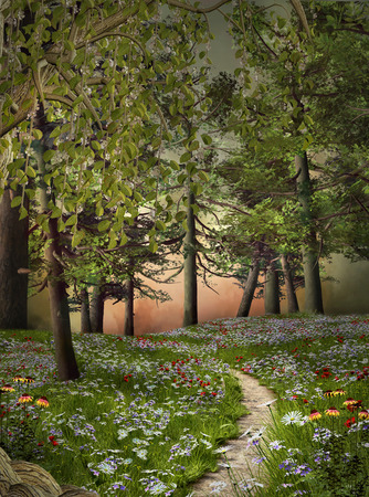 Enchanted nature series - Summer pathway photo
