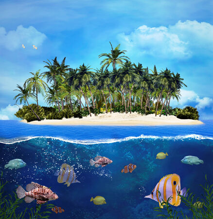 Tropical island and coral reef photo