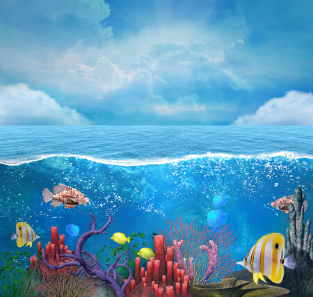 underwater fishes: Coral reef background