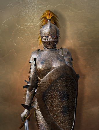 female warrior: Medieval knight