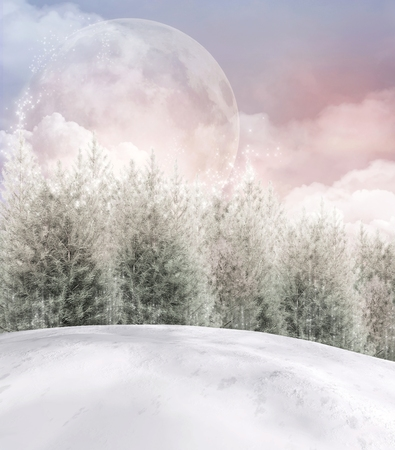enchanted forest: Enchanted winter forest  Stock Photo