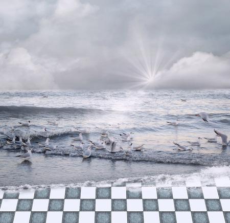 seagulls: Seascape with seagulls