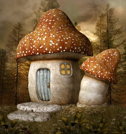 enchanted forest: Mushroom house