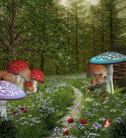 enchanted forest: Enchanted nature series - Pathway in the green fantasy forest Stock Photo
