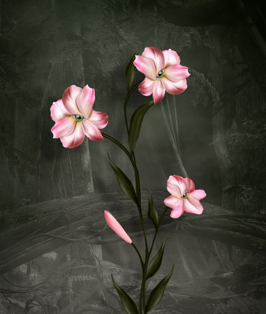 surreal: Surreal lily on dark background
