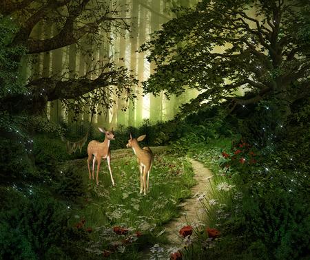 마법의 자연 시리즈 - 녹색 숲의 중간에 새끼 사슴