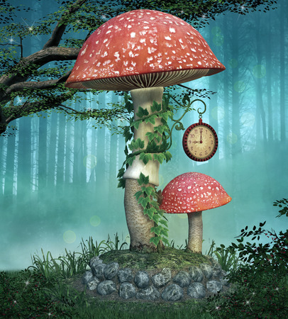 to place: Elves enchanted mushrooms place