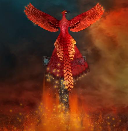 Phoenix Ingevolge een graf