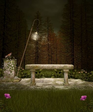 Enchanted bench in the dark forest