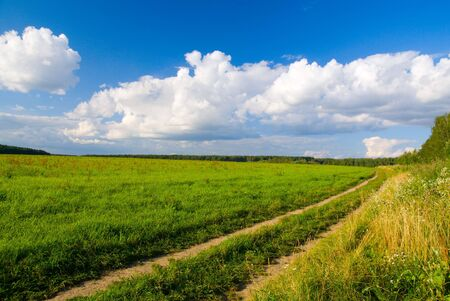 idilic rural landscape with green grass field, blue sky, fluffy clouds and road in sunset light