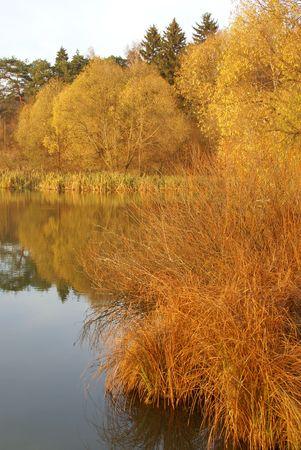 riverside landscape: autumn riverside landscape at sunset