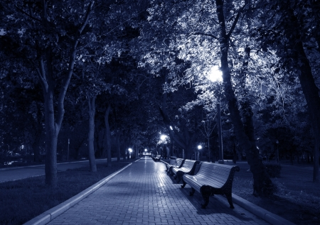 urban jungle: Night Park Wood Benches and Alley Late Autumn toned in blue