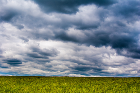 landscape with grass field and stormy dramatic sky at sunset Stock Photo