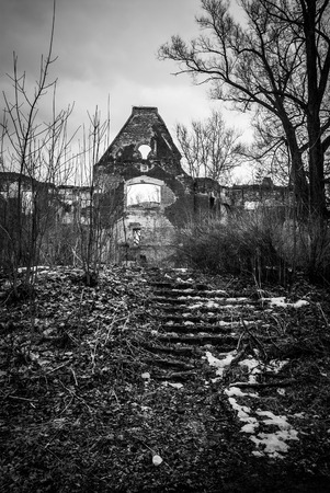 demolition: black white horror landscape ruined building trees stairs