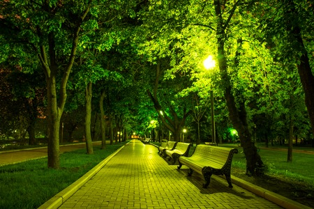 Night Park Wood Benches and Alley at summer photo