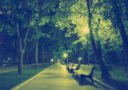 Night Park Wood Benches and Alley