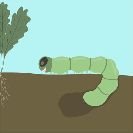 caterpillar green art garden cabbage butterfly plants Standard-Bild - 117281249