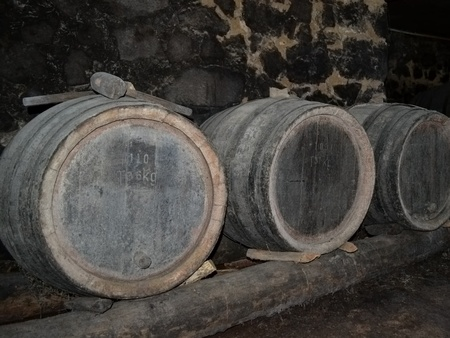 wine grower: Barrels in the wine-cellar of a rural house.