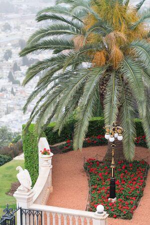 Garden and terraces Haifu, Israel - March 24, 2018 Редакционное